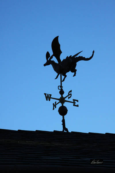 Photograph - Dragon Weathervane by Diana Haronis