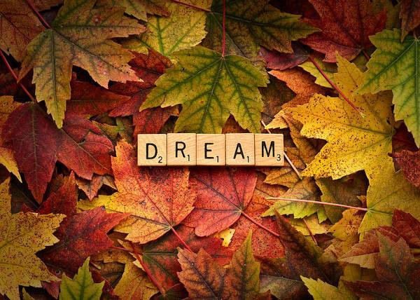 Photograph - Dream-autumn by  Onyonet  Photo Studios