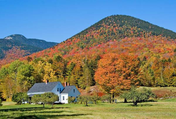 Photograph - Dream House Close Autumn by Larry Landolfi