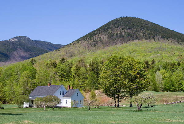 Photograph - Dream House Close Spring by Larry Landolfi