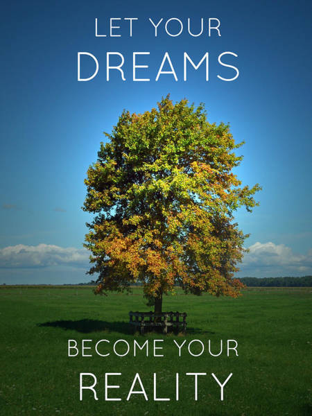 Photograph - Dreams Become Reality by Cyryn Fyrcyd