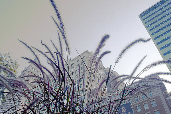 Photograph - Dreamy City by Milena Ilieva