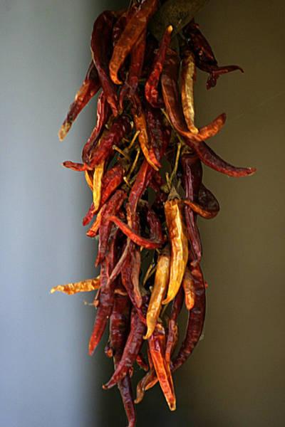 Photograph - Dried Peppers by Emanuel Tanjala