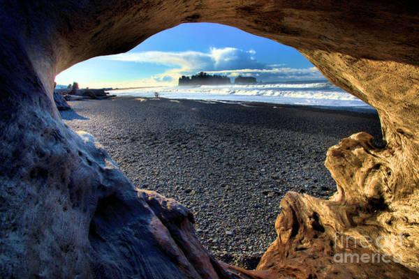 Photograph - Drifting On The Beach by Adam Jewell