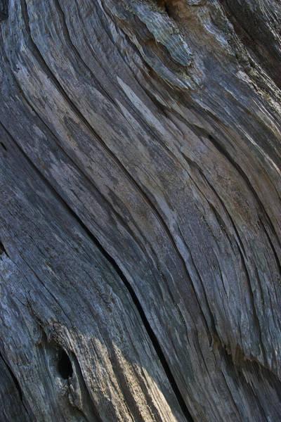 Photograph - Driftwood Ridges 2 by David Kleinsasser