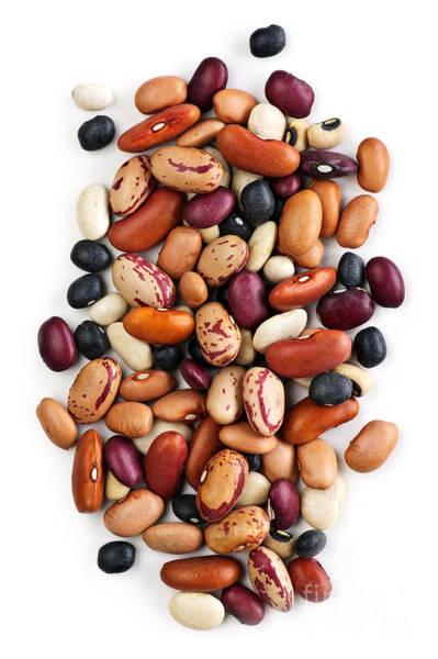 Staples Photograph - Dry Beans by Elena Elisseeva