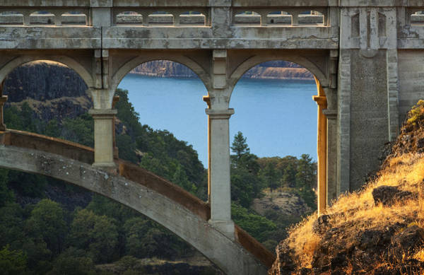 Photograph - Dry Canyon Bridge by Jon Ares