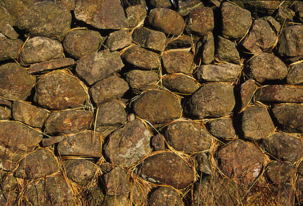 Northumbria Photograph - Dry Stone Wall by Chris Knapton