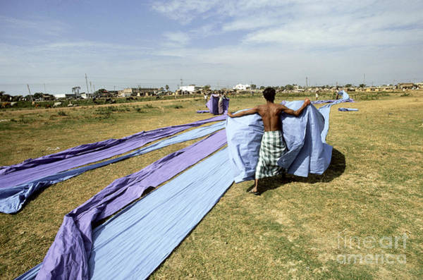 Laying Out Photograph - Drying Dyed Cotton by Bernard Wolff