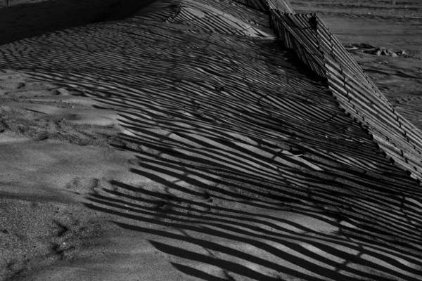 Photograph - Dunes Fence Shadows by Sven Brogren