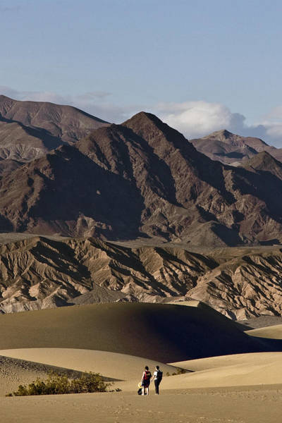 Photograph - Dunes Of Death Valley by Wes and Dotty Weber
