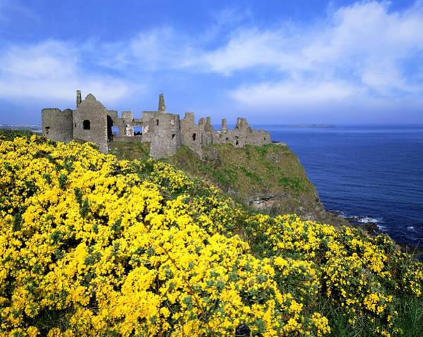 Horizontally Photograph - Dunluce Castle, Co. Antrim, Ireland by The Irish Image Collection