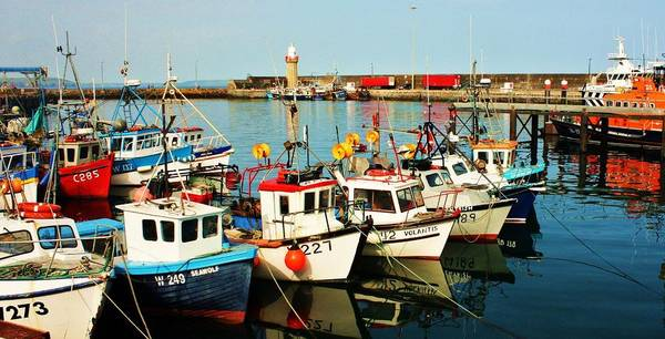 Dunmore East Photograph - Dunmore East Harbour by Paul Dower