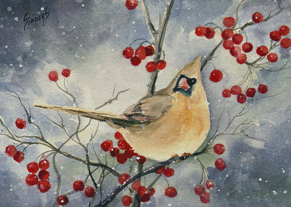 Painting - Dustie's Cardinal by Sam Sidders