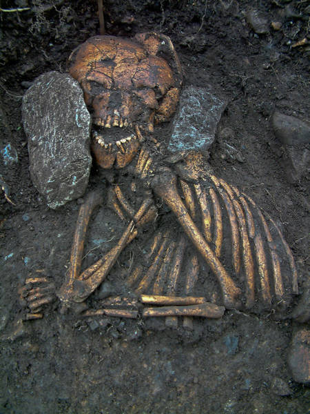 Ear Muffs Photograph - Early Medieval Burial by John Channing