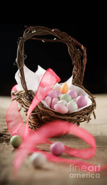 Wall Art - Photograph - Easter Candy by Kati Finell