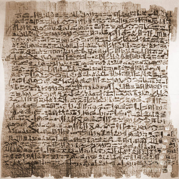 Cursive Photograph - Edwin Smith Papyrus, Oldest Surgical by Science Source