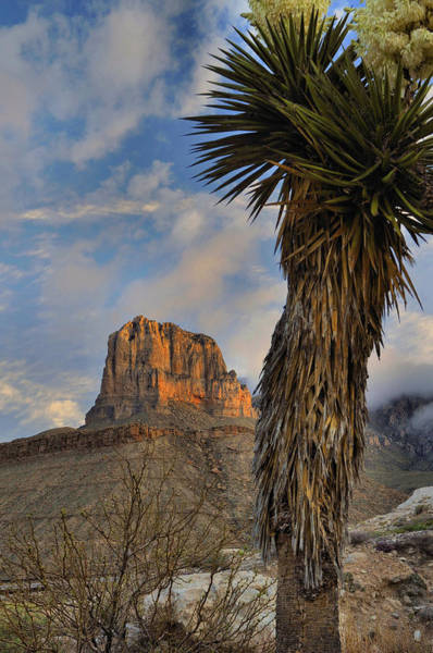 Wall Art - Photograph - El Capitan At Sunrise 2 by Stephen  Vecchiotti