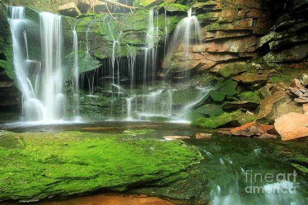 Photograph - Elakala Falls Pool by Adam Jewell