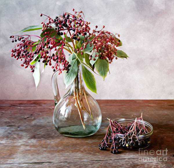 Still-life Painting - Elderberries 01 by Nailia Schwarz