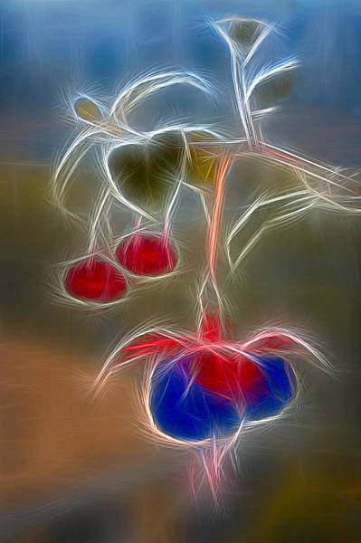 Digital Art - Electrifying Fuchsia by Susan Candelario