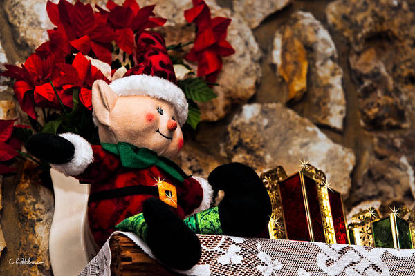 Photograph - Elf On Shelf by Christopher Holmes