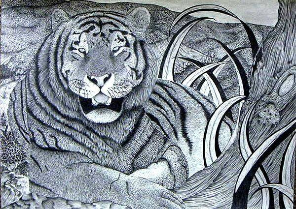 Wall Art - Drawing - Endangered Majesty by Dom Rose