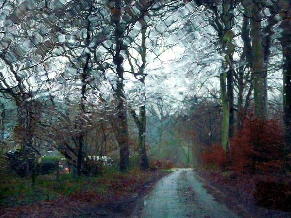 Wall Art - Photograph - England Rain by Rdr Creative