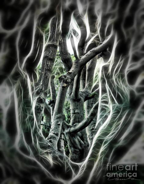 Fractal Landscape Digital Art - Entangled Worlds by Danuta Bennett