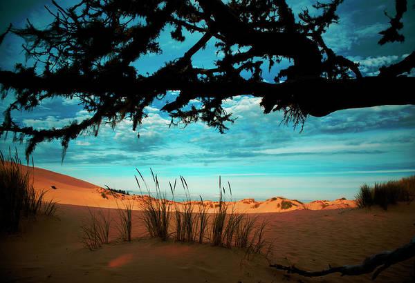 Oregon Dunes Photograph - Enter The Dunes by Dale Stillman