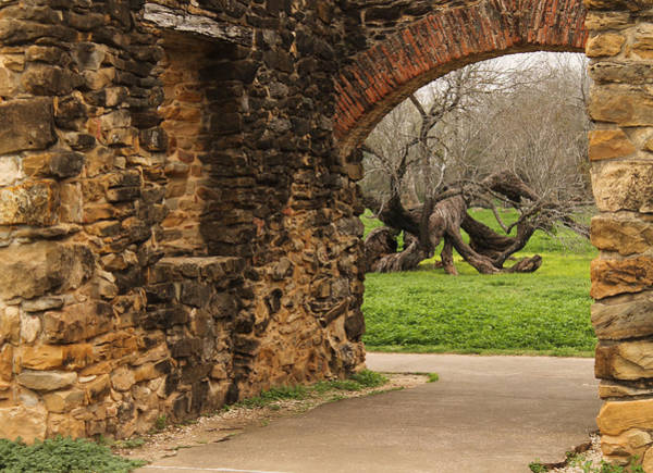 Photograph - Entrance To Mission Espada by Sarah Broadmeadow-Thomas