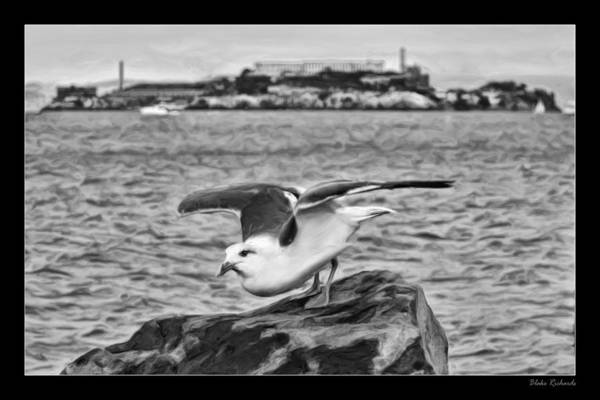 Photograph - Escape From Alcatraz by Blake Richards