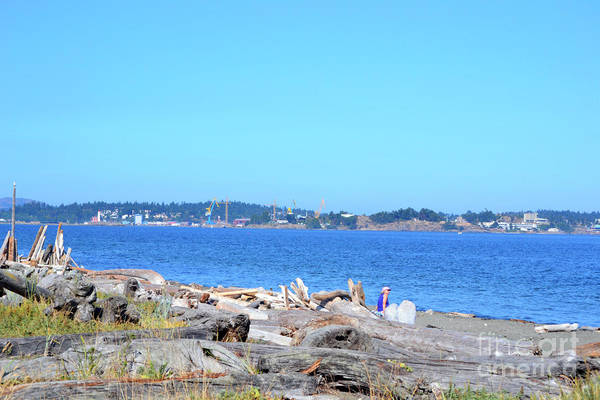Photograph - Esquimalt Lagoon by Traci Cottingham