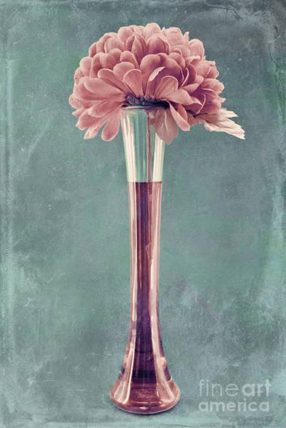 Blue Vase Photograph - Estillo Vase - S01v4b2t03 by Variance Collections