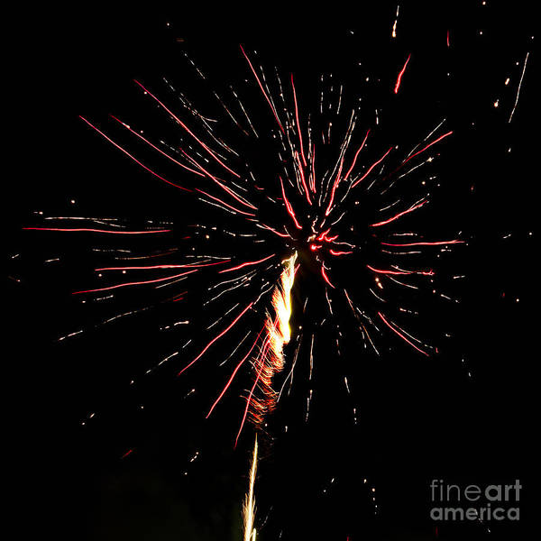 Photograph - Explode by Agusti Pardo Rossello