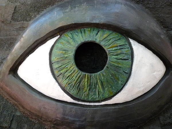 Photograph - Eye by Jeff Lowe