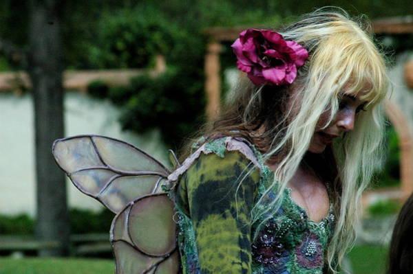 Photograph - Fairy by Teresa Blanton