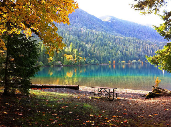 Photograph - Fall At Lake Crescent by Kelly Manning