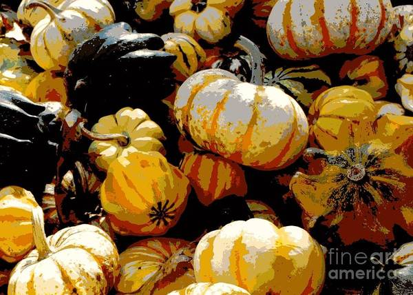 Acorn Squash Photograph - Fall Bounty by Carol Groenen