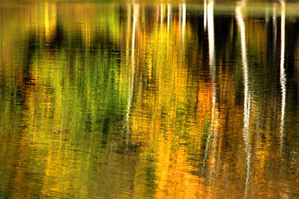 Photograph - Fall Colors Reflection by Emanuel Tanjala