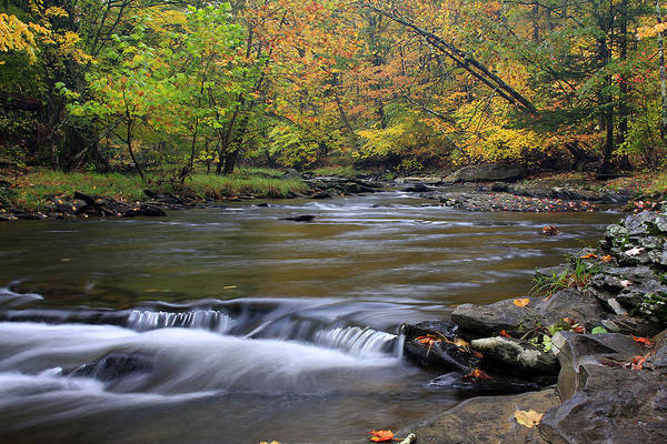 Catskills Photograph - Fall Forward by Jeff Bord
