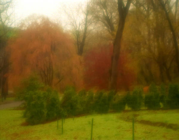 Photograph - Fall In Brandywine Park by Emery Graham