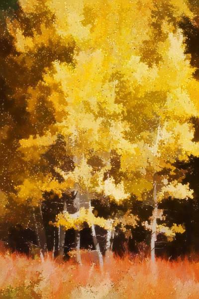Aspen Wall Art - Photograph - Fall In The Sierra II by Carol Leigh