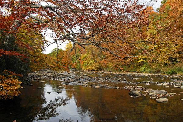 Laurel Hill Creek Photograph - Fall On Laurel Hill Creek by Dan Myers
