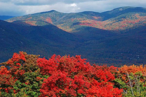 Photograph - Fall Splendor In The White Mountains by Nancy De Flon