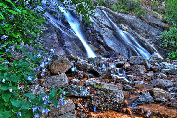 Helen Hunt Falls Photograph - Falls And Wildflowers by Scott Mahon