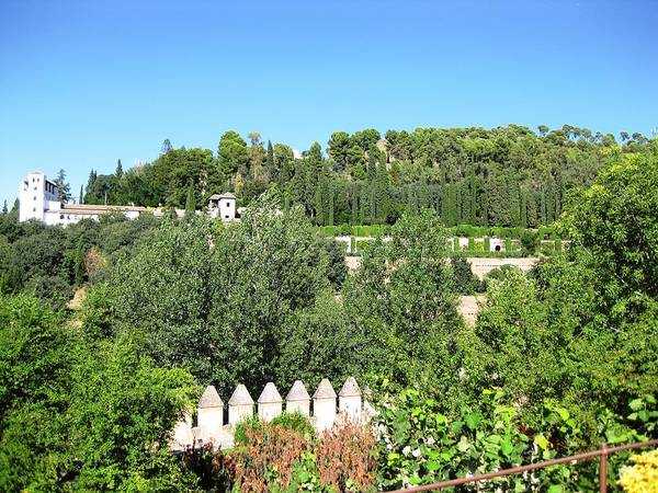 Photograph - Fantastic View Of Alhambra Grounds And Garden Granada Spain by John Shiron