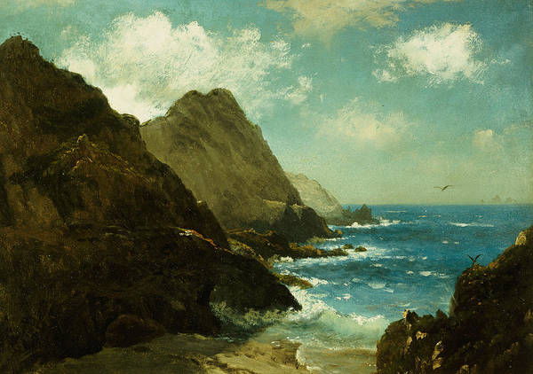 Outcrop Painting - Farallon Islands by Albert Bierstadt