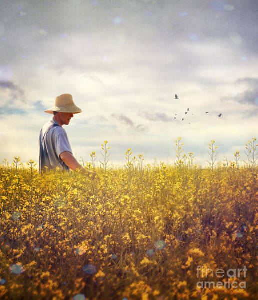 Photograph - Farmer Checking His Field Of Rapeseed by Sandra Cunningham