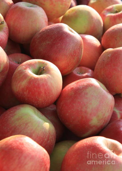 Photograph - Farmers Market Apples by Carol Groenen